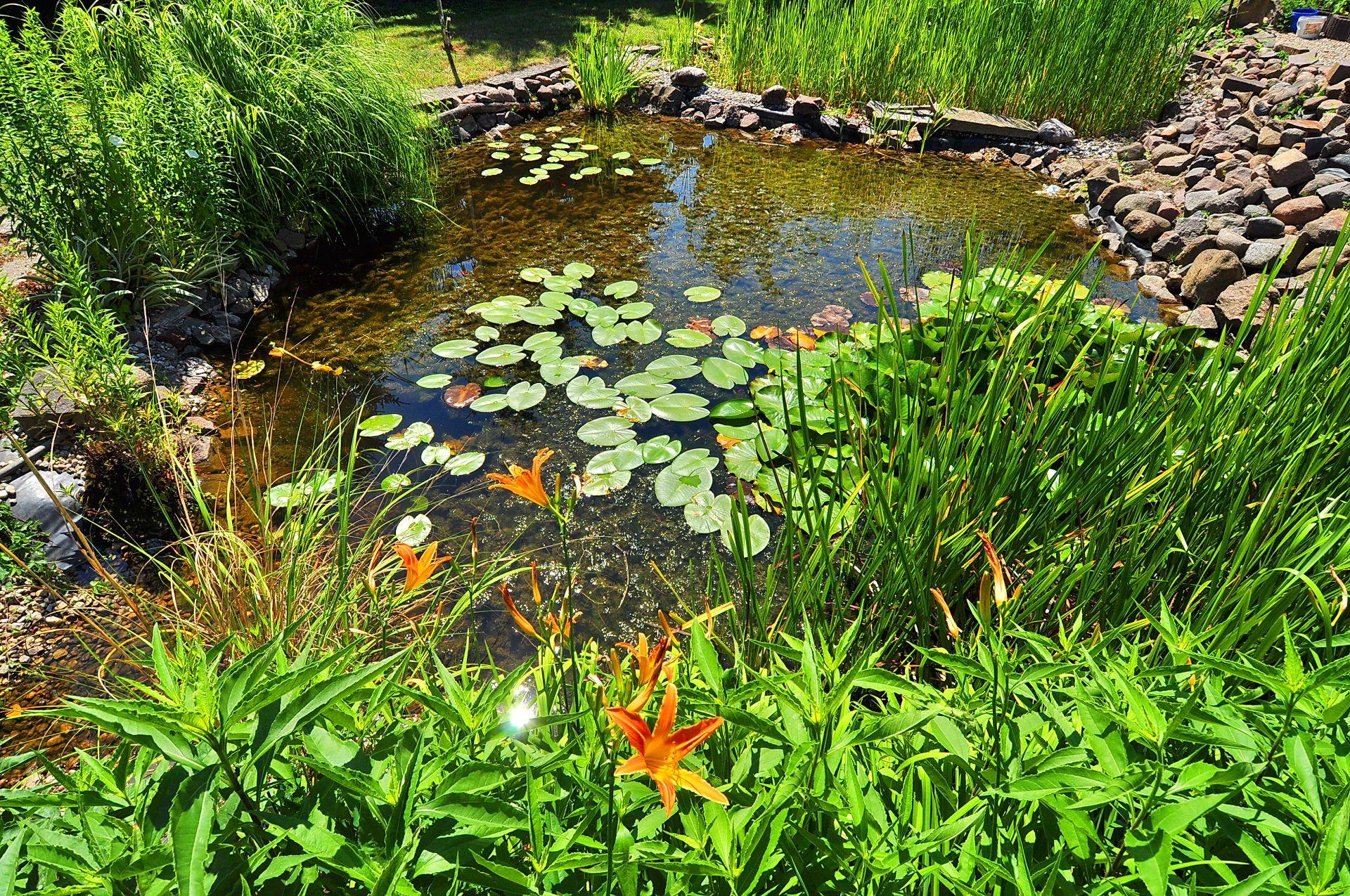 Hotelgarten flair hotel reuner for Gartenteich mit goldfischen